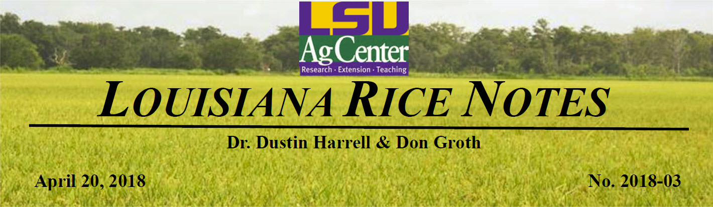 LA Rice note3 image.jpg thumbnail